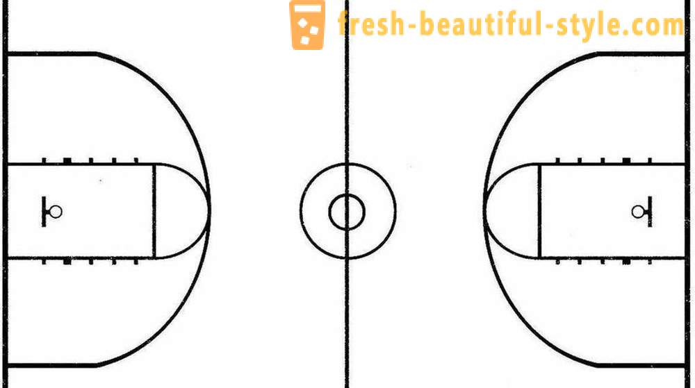Basketball court: photos, sizes and features