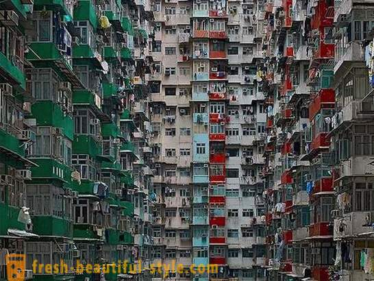61 fact about Hong Kong through the eyes of Russians