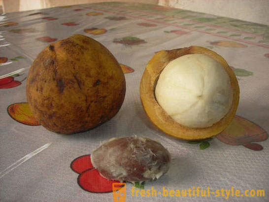 20 exotic fruits, which you did not know